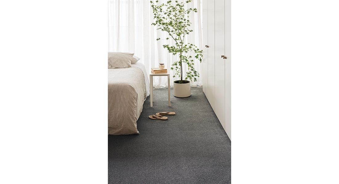 Residential Flooring - Carpet, Harlow, Torrance, Yani